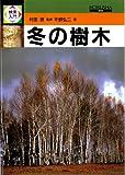 冬の樹木 (検索入門)