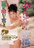 かりそめの可憐 川田あつ子 [DVD]