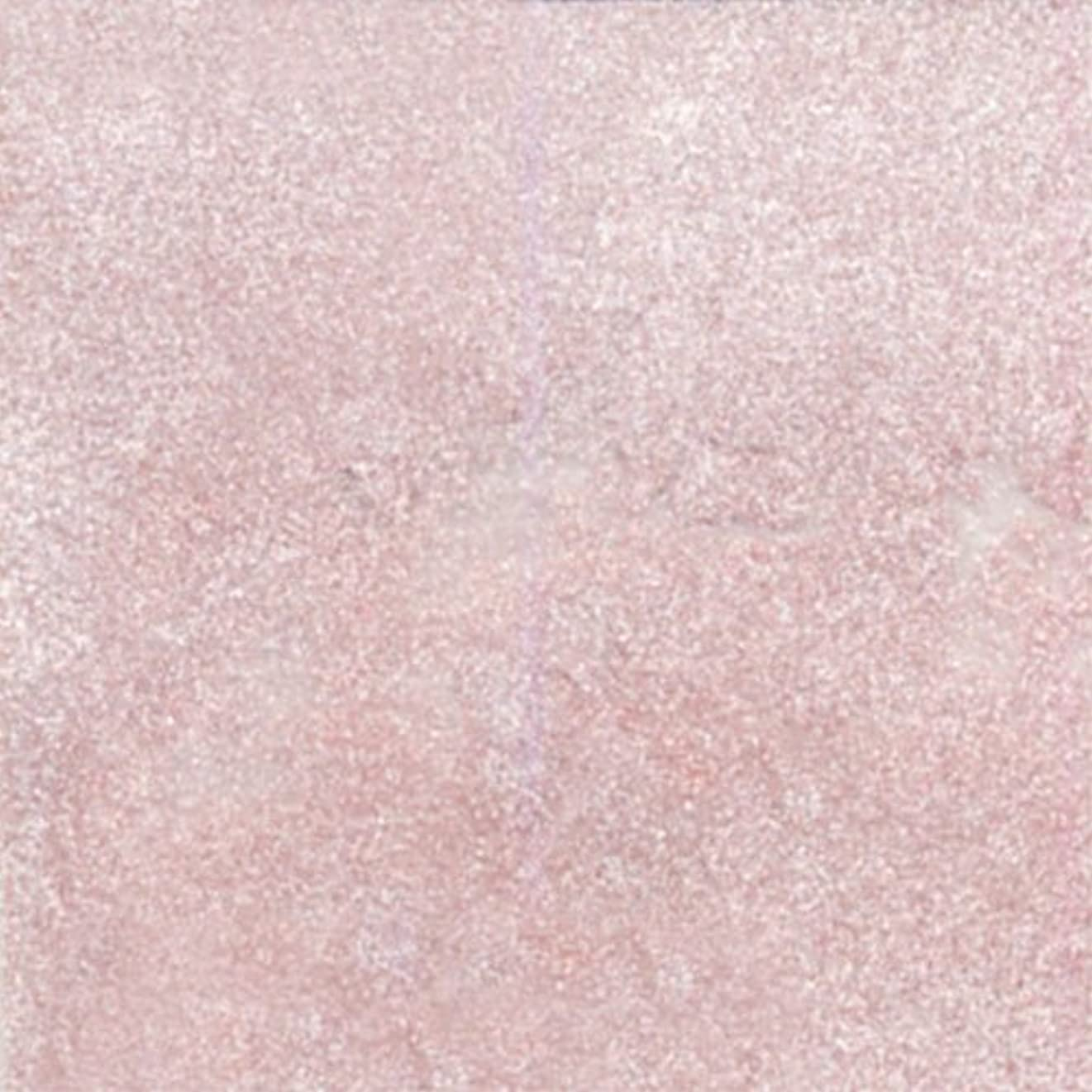 底海峡ひもお気に入りピカエース ネイル用パウダー シャインパウダー #830 薄桜 0.25g