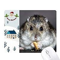ハムスターのペットのかわいい動物のネズミを食べる サンタクロース家屋ゴムのマウスパッド
