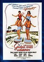 Gidget Goes Hawaiian [DVD]