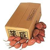 種子島産 訳あり安納芋 Mサイズ 3kg [W-M--3]