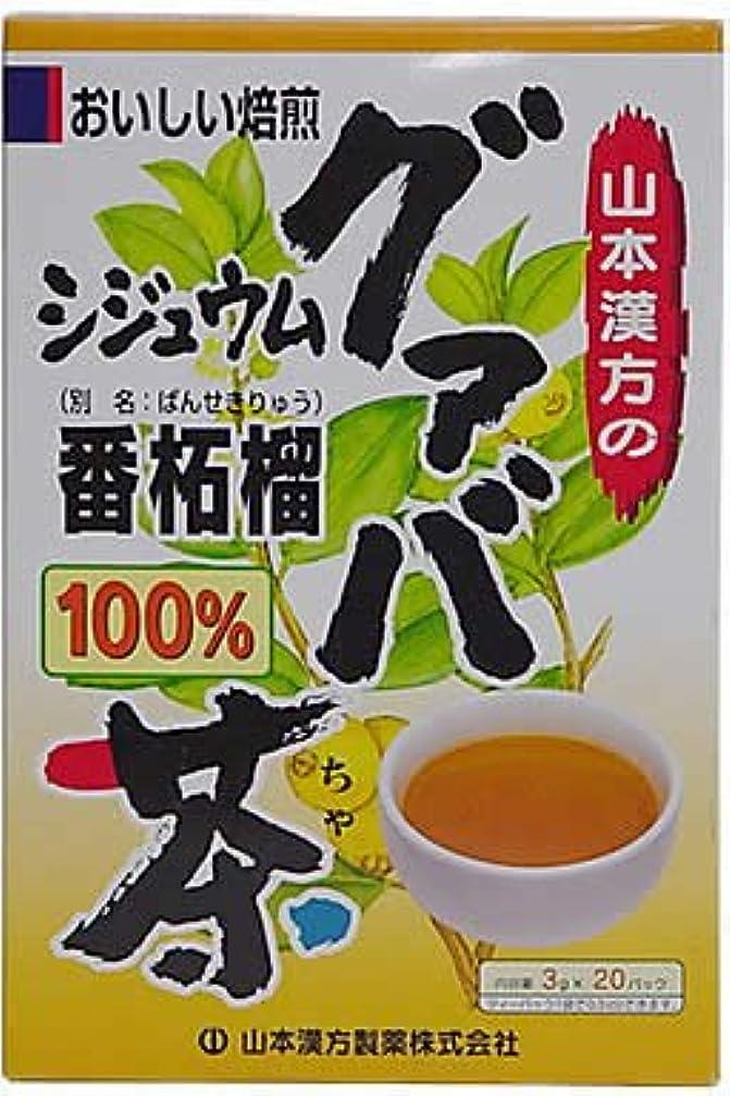 終点欲望アンテナ山本漢方製薬 シジュウムグァバ茶100% 3gX20H