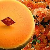 OCS 母の日 ギフト 濃厚チーズケーキとオレンジカーネーション鉢植えセット