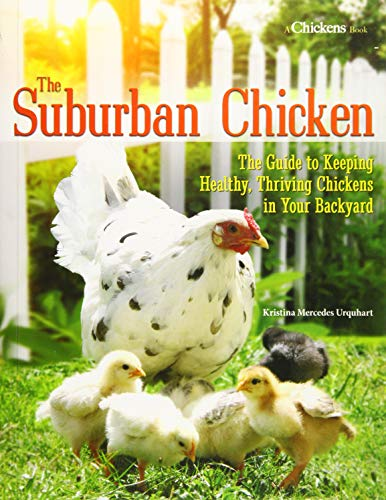 Download The Suburban Chicken: The Guide to Keeping Healthy, Thriving Chickens in Your Backyard 1620081970