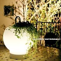 LED ソーラーライトセット【 mimico(ミミコ) 】