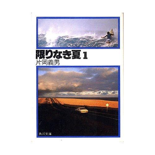 限りなき夏 1 (角川文庫 緑 371-22)の詳細を見る