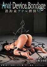 Anal Device BondageVI 鉄拘束アナル拷問 小野寺梨紗 [DVD]