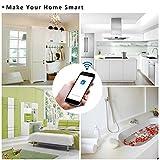 スマートソケット Sonoff S31 WiFi リモコンスイッチ 家電スイッチ Android/IOS対応