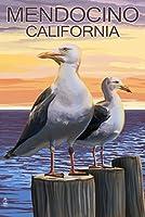 Mendocino、カリフォルニア–Sea Gulls 24 x 36 Giclee Print LANT-56177-24x36
