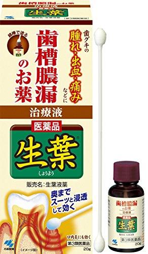 【第3類医薬品】生葉液薬 20g