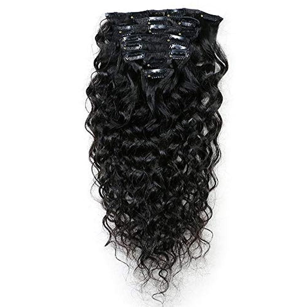 バケツ狂った折り目YESONEEP 100%本物の人間のヘアクリップヘアエクステンション黒フルヘッド10-24インチロングストレートナチュラルな見た目の複合毛レースかつらロールプレイングかつら長くて短い女性自然 (色 : 黒, サイズ :...