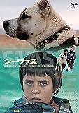 シーヴァス SiVAS [DVD]