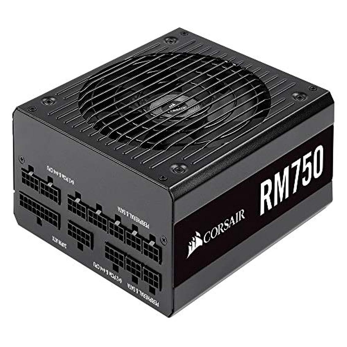 彫る更新する心配するCorsair RM750-2019- 750W PC電源ユニット 80PLUS GOLD PS862 CP-9020195-JP