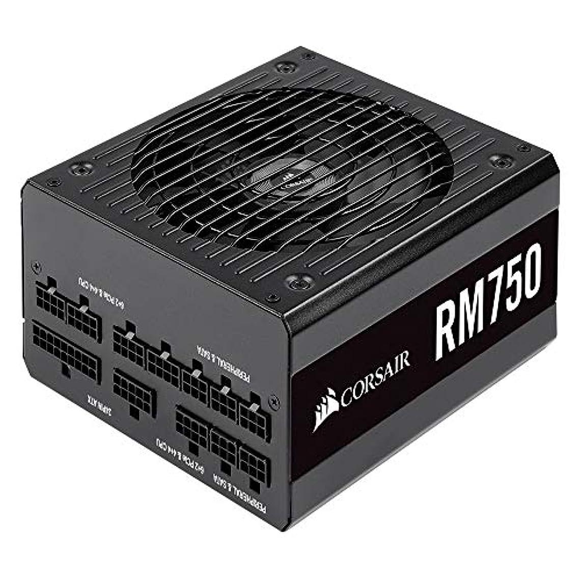 いっぱいカール単語Corsair RM750-2019- 750W PC電源ユニット 80PLUS GOLD PS862 CP-9020195-JP