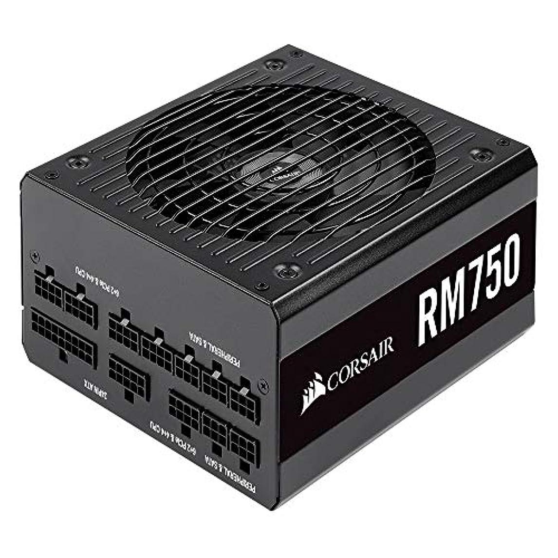 市の中心部したいそこCorsair RM750-2019- 750W PC電源ユニット 80PLUS GOLD PS862 CP-9020195-JP