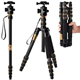 [Rangers] デジタルカメラ 一眼レフカメラ Canon Nikon Petax Sonyなど用 超軽量 カーボンファイバー製 5段 三脚・一脚可変式&ボールヘッド雲台 水準器付き ゴールド RA012