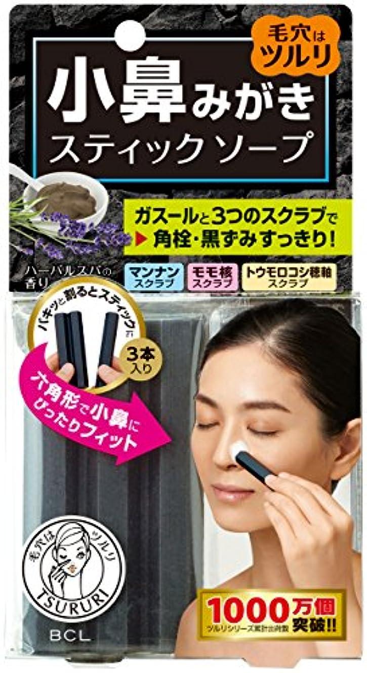 表現宣伝ライナーツルリ小鼻磨きソープ