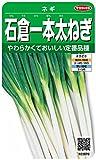 サカタのタネ 実咲野菜3870 石倉一本太ねぎ ネギ 00923870
