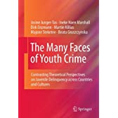 The Many Faces of Youth Crime: Contrasting Theoretical Perspectives on Juvenile Delinquency across Countries and Cultures