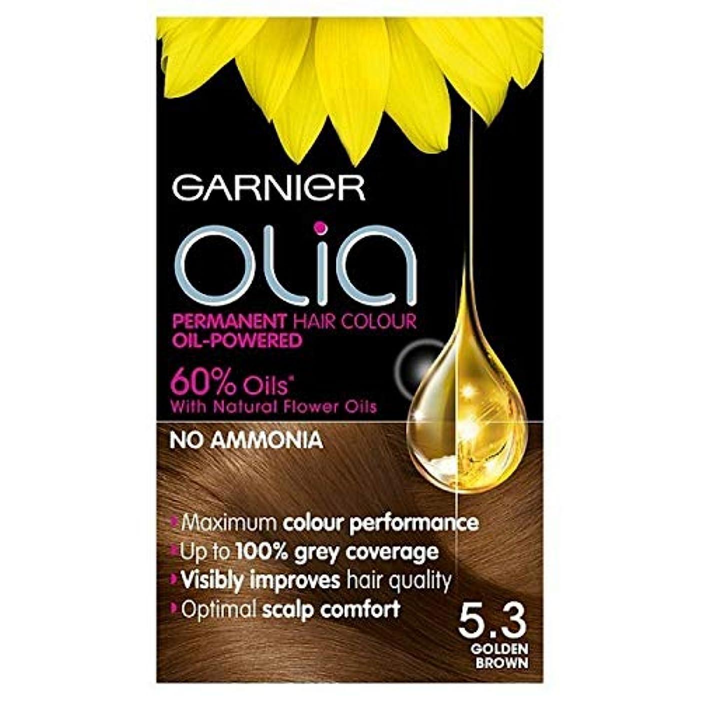 ギャラリーマウス鷹[Garnier ] 5.3キツネ色ガルニエOliaパーマネントヘアダイ - Garnier Olia Permanent Hair Dye Golden Brown 5.3 [並行輸入品]