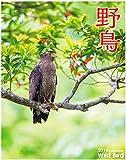 2019年 野鳥カレンダー(専用アプリAR動画機能付)