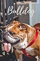Notebook: Bull dog, Journal, Diary (110 Pages, Blank, 6 x 9) (Dogs)