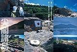 教科書が教えてくれない 日本の領土の歴史 (歴史探訪シリーズ・晋遊舎ムック)
