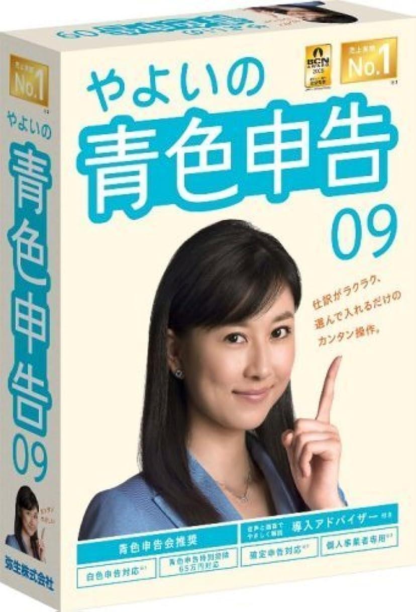 故意のアーカイブ苦行【旧商品】やよいの青色申告 09