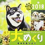 犬めくりカレンダー(リフィル版) 201 ([カレンダー]) 画像