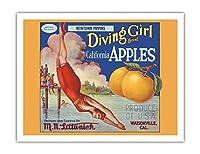 カリフォルニアのリンゴ - ニュータウンPippins - ダイビングガールズブランド - ビンテージなフルーツの木箱のラベル c.1920s - アートポスター - 51cm x 66cm
