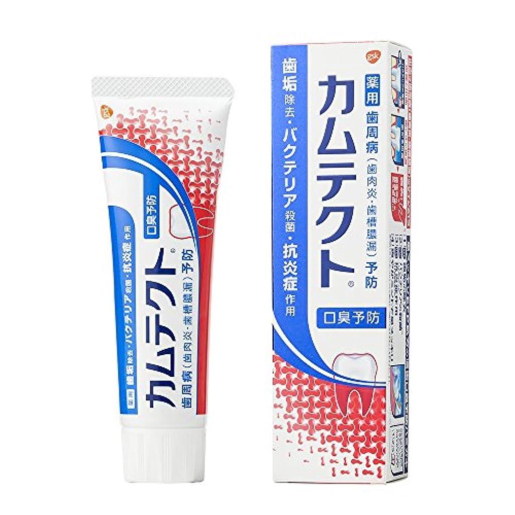 気質ラブ鎮静剤[医薬部外品]カムテクト 口臭予防 歯周病(歯肉炎?歯槽膿漏) 予防 歯みがき粉 105g