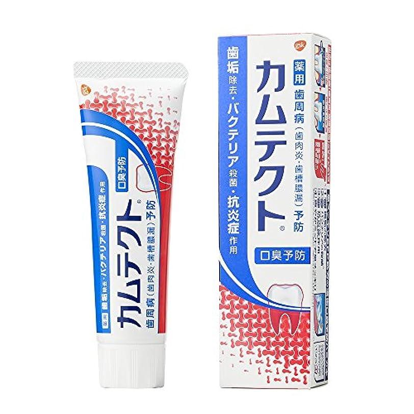 電気摂氏目立つ[医薬部外品]カムテクト 口臭予防 歯周病(歯肉炎?歯槽膿漏) 予防 歯みがき粉 105g