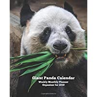 Giant Panda Calendar  Weekly Monthly Planner Organizer for 2019