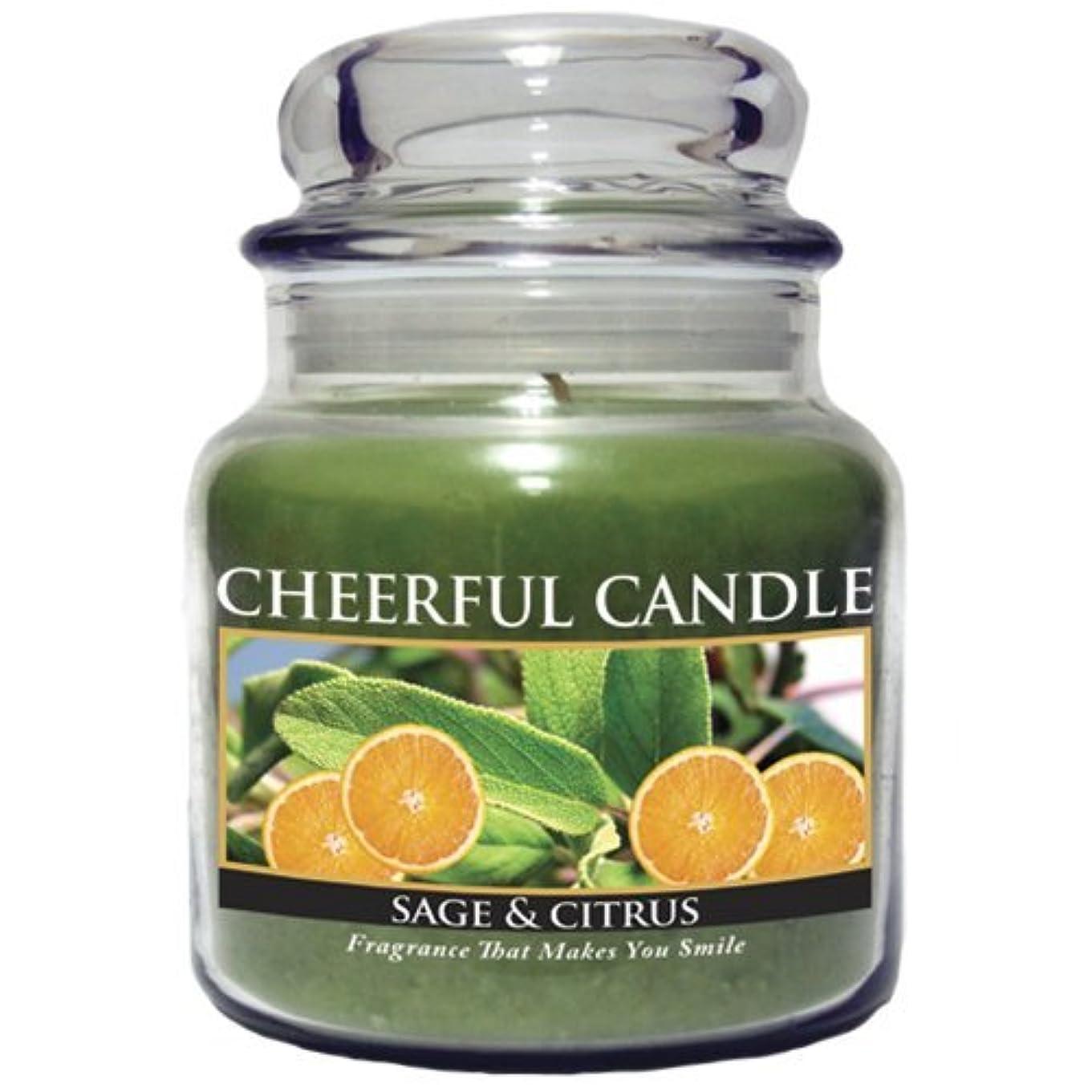 大きなスケールで見ると授業料引くA Cheerful Giver Sage and Citrus Jar Candle, 16-Ounce [並行輸入品]