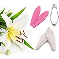 AK ART KITCHENWARE Lily Petal Decoration Tool Leaf and Flower Tool Kit Stainless Steel Cookie Cutter Set Silicone Veining Mould Petal Sugar Flower Making Tool A351 & VM067