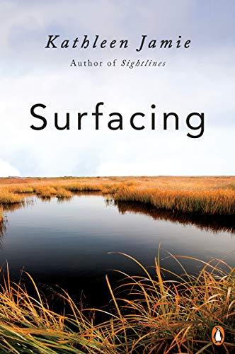 Surfacing (English Edition)