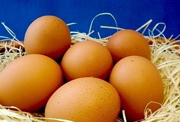 三河濃厚卵 満月 10個入り3パック (30個)