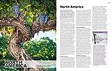 The World Atlas of Wine 8th Edition 画像