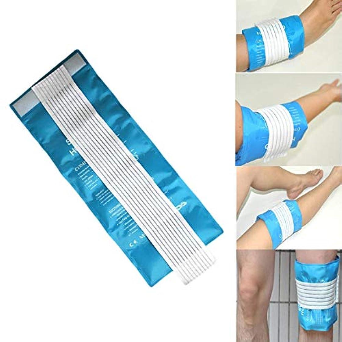 しゃがむスズメバチ逸話FuLanDe アイシングバッグ 氷嚢,大口径アイスバッグ,氷のう アイシングバッグ 結露なし 水漏れ防止 繰り返し利用 ケガ 熱中症 スポーツ用 (Blue)