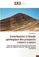 Contribution à l'étude géologique des prospects miniers à cuivre: dans les volcanites du PIII (Ediacarien) de la région de Taghouni-Amda N' Waarab, Saghro occidental