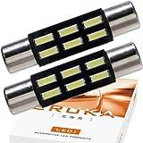 エルカ(Eruka) T6.3×31 明るさ段違い 最新4014SMD贅沢に6連 バニティランプ 2個 白 国内検査品 GV-078-2S