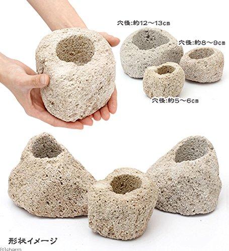 形状おまかせ 抗火石鉢 小 穴径5~6cm 1個 ミニミニ盆栽鉢