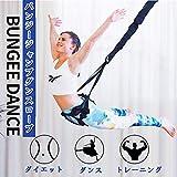 バンジージャンプダンスロープ つり下げ式トレーニングロープ ヨガストラップ ヨガ器具 ダイエット 器具 ダイエット器具 姿勢改善 基礎代謝改善