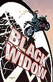 Black Widow Vol. 1: S.H.I.E.L.D.'s Most Wanted