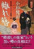 離れ簪 風烈廻り与力・青柳剣一郎37 (祥伝社文庫)