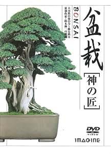 盆栽[神の匠] [DVD]