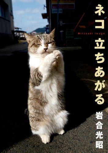 ネコ 立ちあがる―ニッポンの猫写真集の詳細を見る
