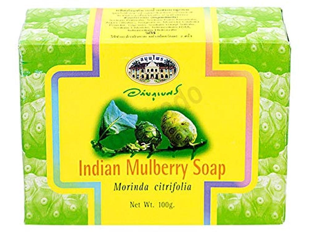 試みる湿った必要性アバイブーベ インディアンマルベリーソープ 100g 12個(ヤマト便)