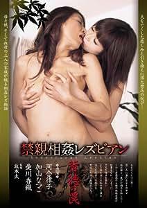 禁親相姦レス゛ヒ゛アン 背徳の罠 (LGJVD-011) [DVD]